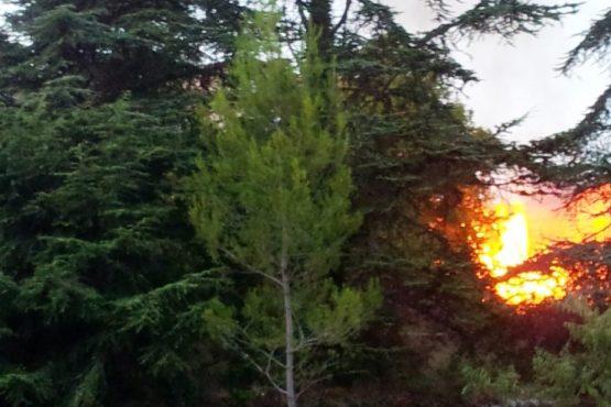 Brûlage des végétaux est Interdit toute l'année Arrêté 033-2020